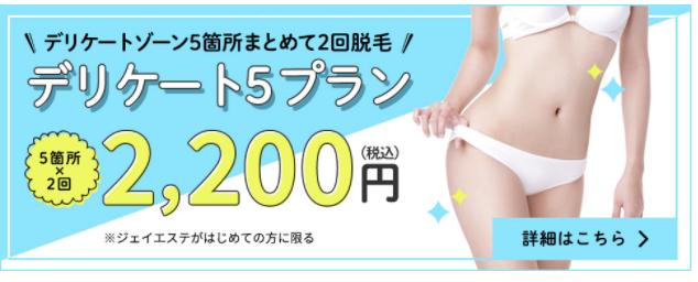 ジェイエステ デリケート5プラン2200円