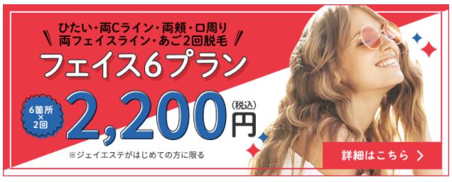 ジェイエステ フェイス6プラン2200円