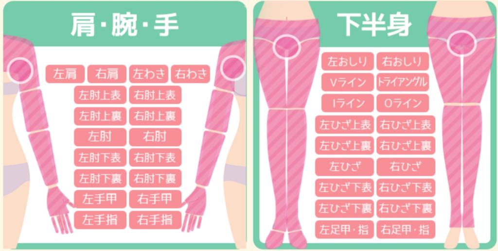 恋肌脱毛範囲の図説②