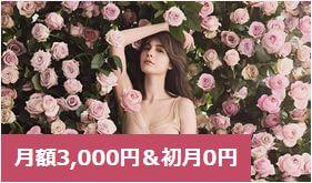 ラココ月額3,000円&初月0円