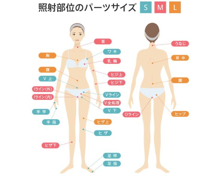渋谷美容外科 身体 SMLパーツ