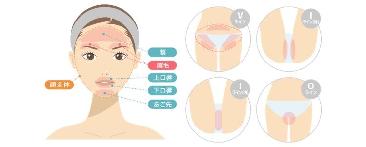 渋谷美容外科 顔VIO SMLパーツ