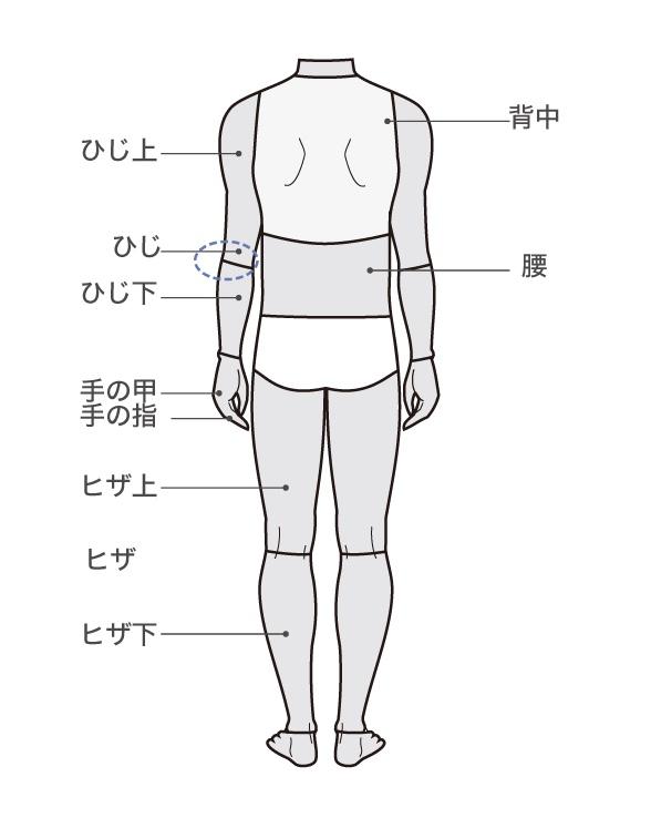 横浜中央クリニック 全身脱毛 背面範囲